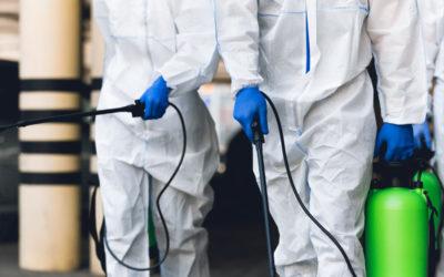 Hisal: una de las mejores empresas de fumigación de Almería