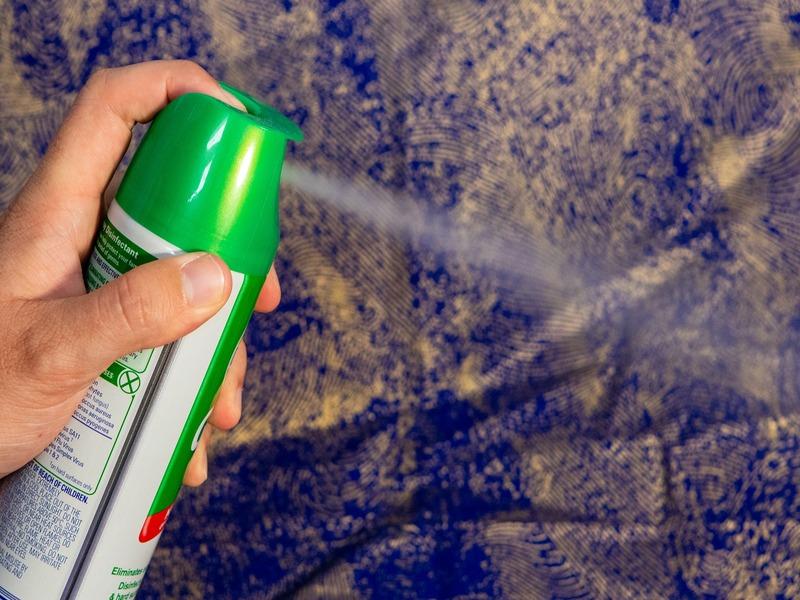 empresas para desinfectar en Almería